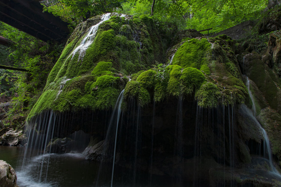 Beauty In Nature Bigar Waterfall Day Forest Green Color Long Exposure Motion Nature No People Outdoors Rock - Object Scenics Tranquil Scene Tree Water Waterfall Waterfront