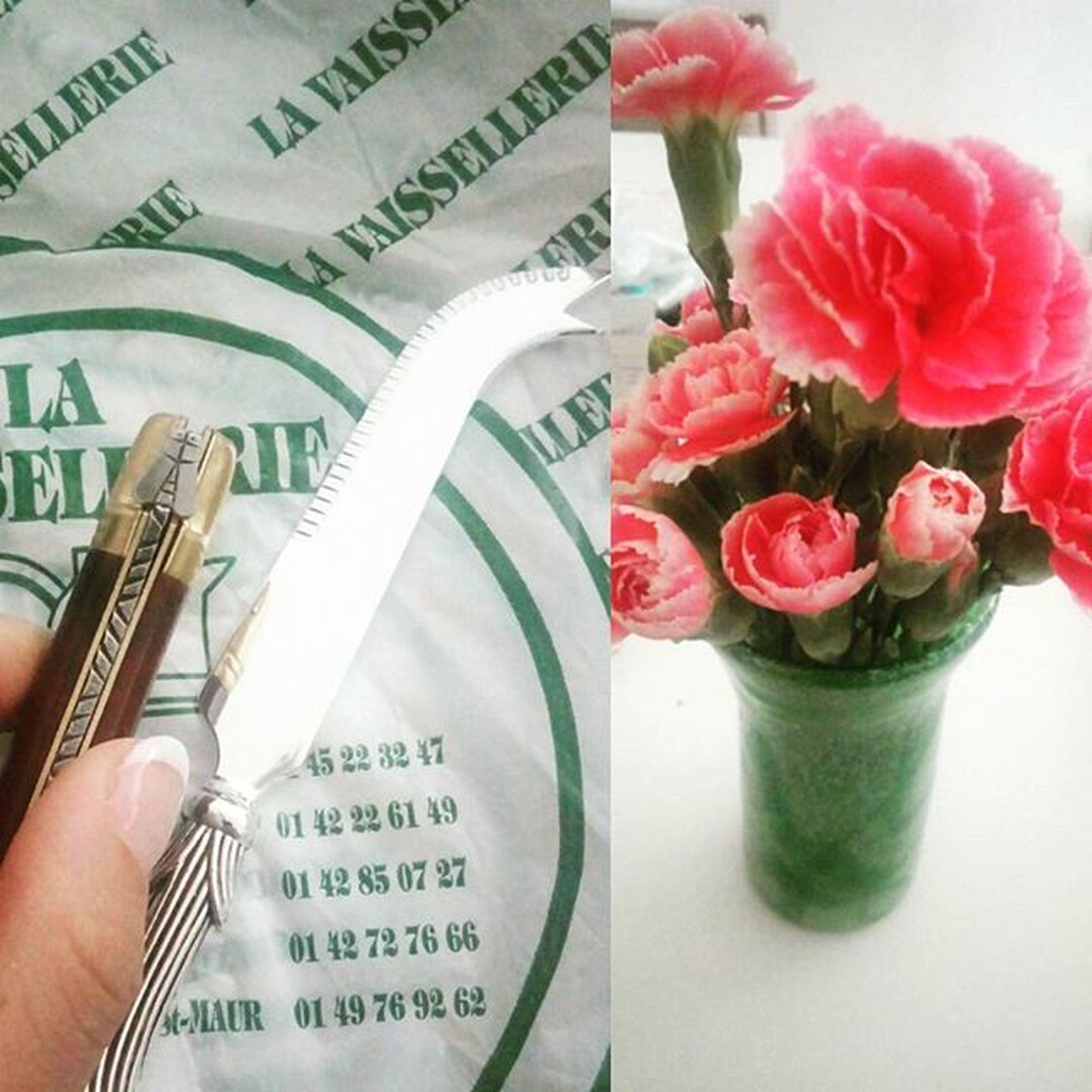 欲しかったラギオールのソムリエナイフ🇫🇷種類いっぱいのチーズナイフ🇫🇷そしてお花のある生活🌹🌷🌸🌺 蜜蜂をてんとう虫とまちがえる Laguiole フックがない アレ Bee Napoleon ってか正直蝉にみえる ややこしい LOL Sommelierknife Onlyoneleft Cheese Knife Couteau Flower Pink Carnation カーネーション Longlasting Futon お花買うときはだいたいそこ 愛用 花瓶 Vase Okinawa madeby 自分 余韻に浸る morning