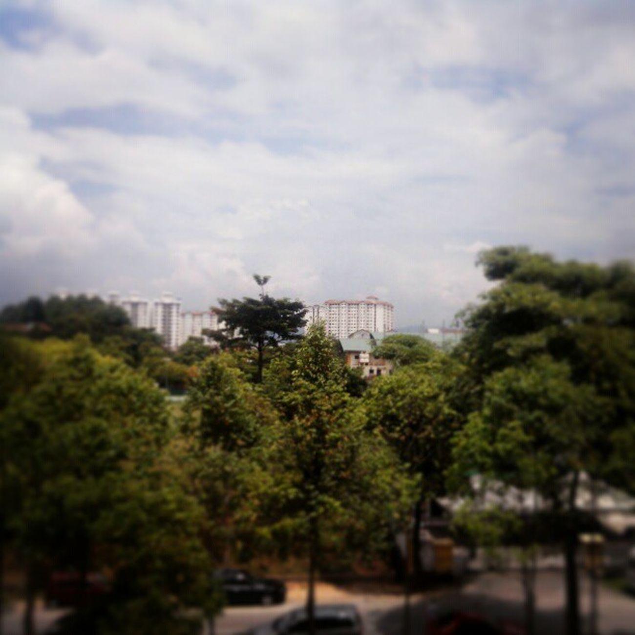 4th floor view.