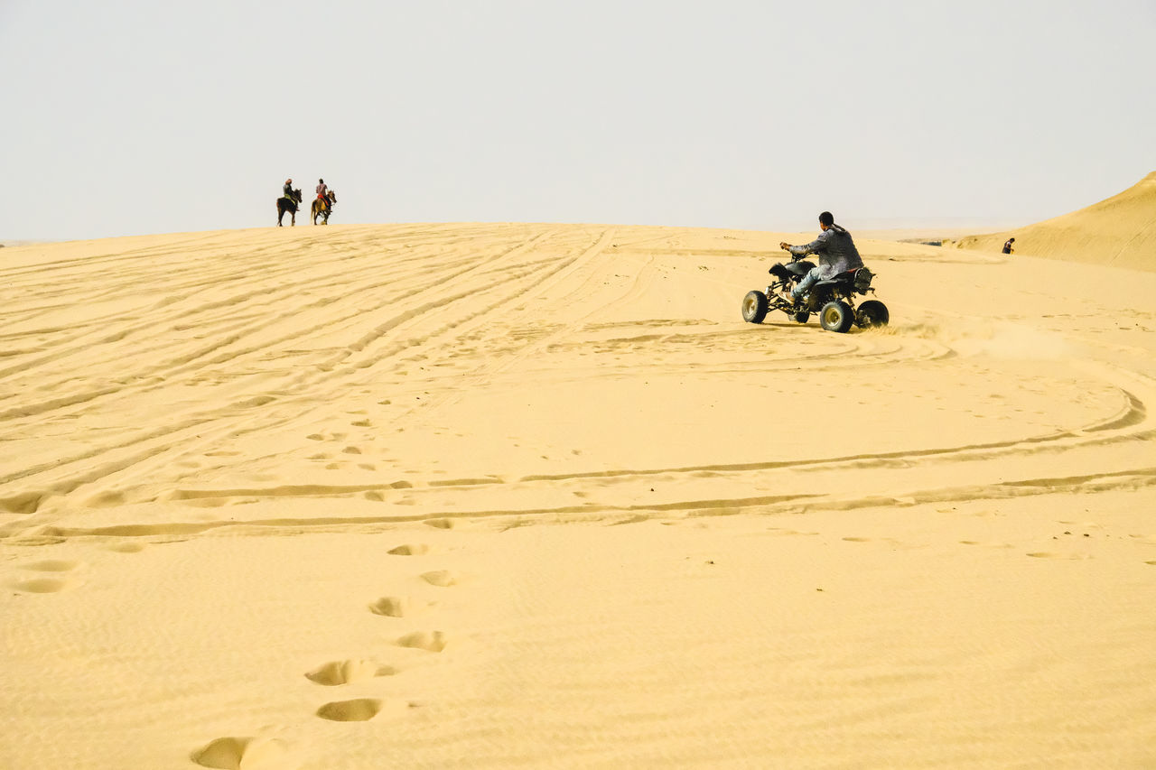 Beach Buggy  Desert Desert Sport Horses Sand WADI El-Rayan, Fayoum, Egypt Live For The Story BYOPaper! The Street Photographer - 2017 EyeEm Awards The Great Outdoors - 2017 EyeEm Awards