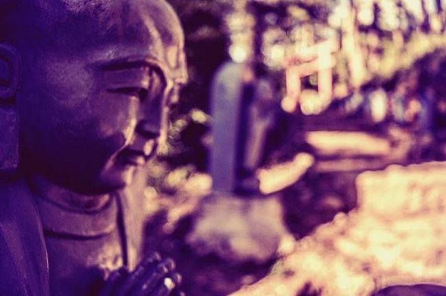 Kongheifatchoy 🎎🐒 恭喜发财 Budha Statue Bokeh Bokehlicious Chinese New Year Eyemphotography EyeEm Gallery