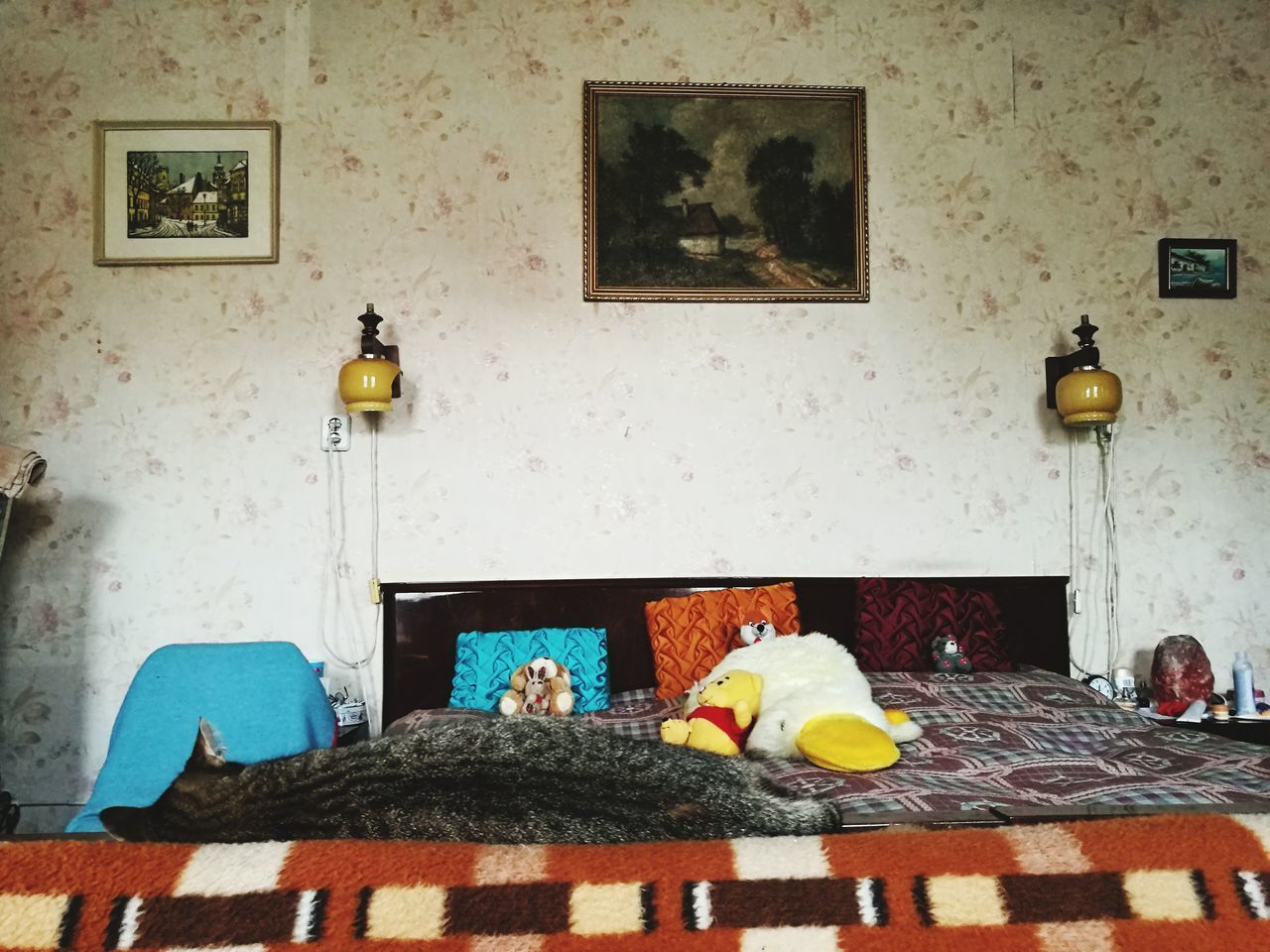 Enterior Animal Themes Living Room Bed Pillow No People Indoor Hungarian Bedroom Sleeping Cat Cat Old Fashion Style