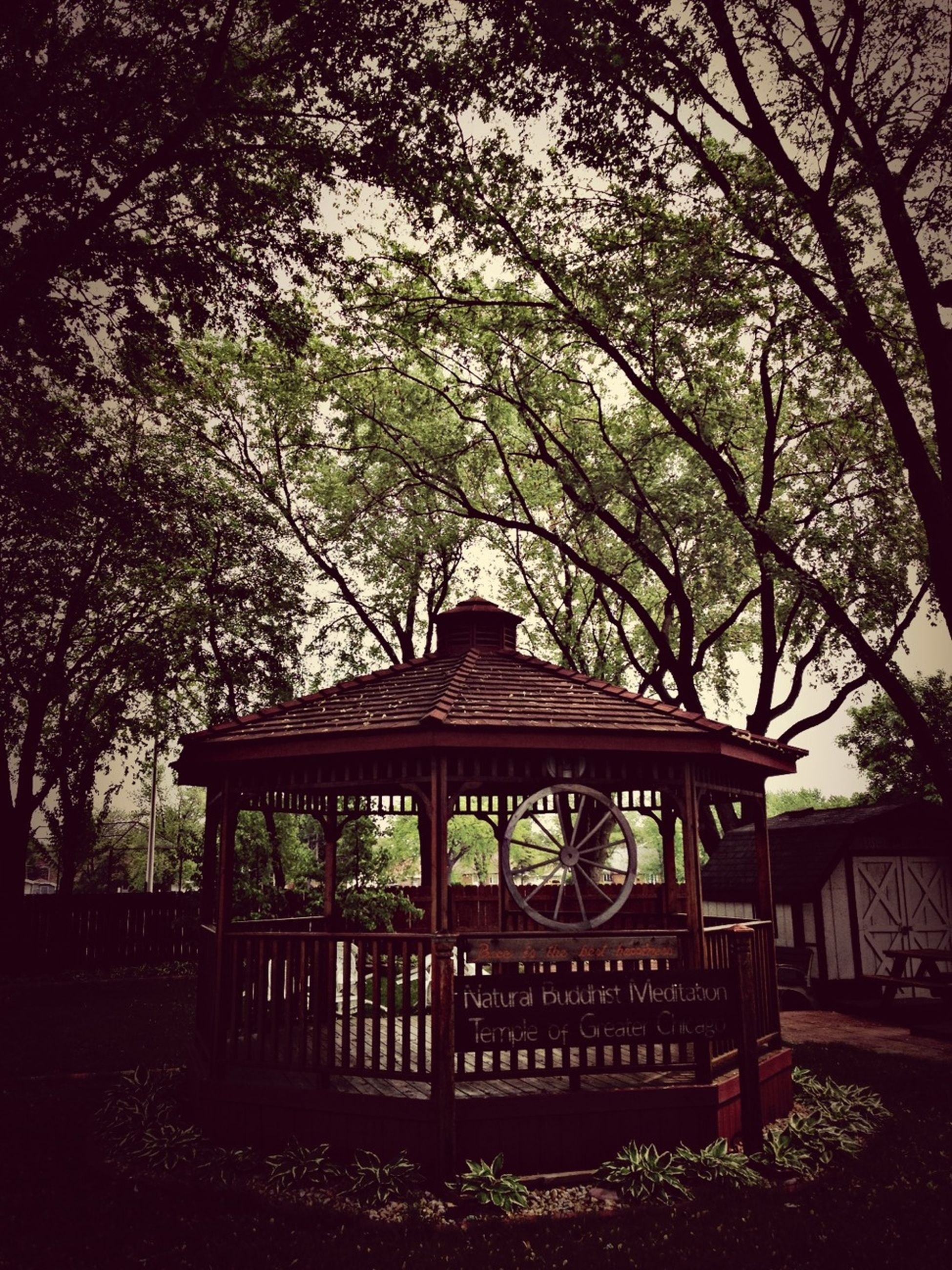 tree, built structure, branch, architecture, wood - material, growth, building exterior, tranquility, nature, bench, railing, text, sky, outdoors, day, no people, park - man made space, clear sky, wooden, tranquil scene