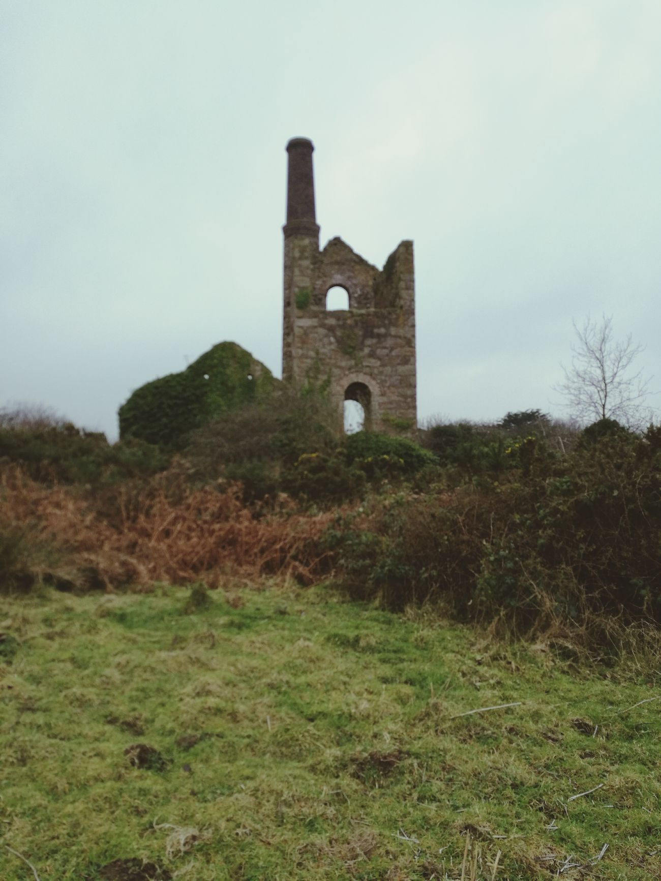 Engine house Outdoors Nature Grass