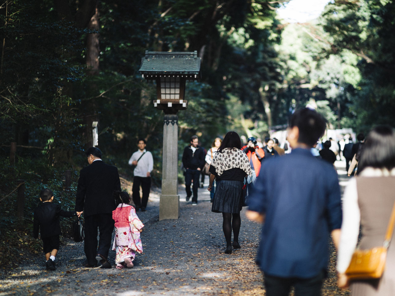 Tokyo Life Adult Celebration Childhood City Crowd Day Family Forest Green Greenery Kids Large Group Of People Light And Shadow Men Outdoors Parents Park People Real People Shrine Walk Walking Warm Warm Colors Women