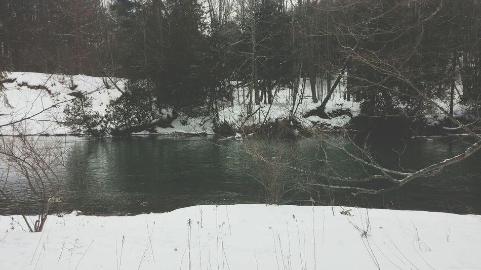 Black And White Scenery Forest River Snow Winter Precisi Sharp