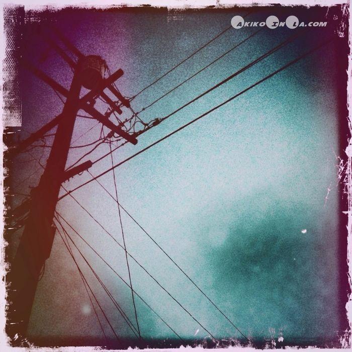 電柱写真クラブ Electrical Utility Pole Club