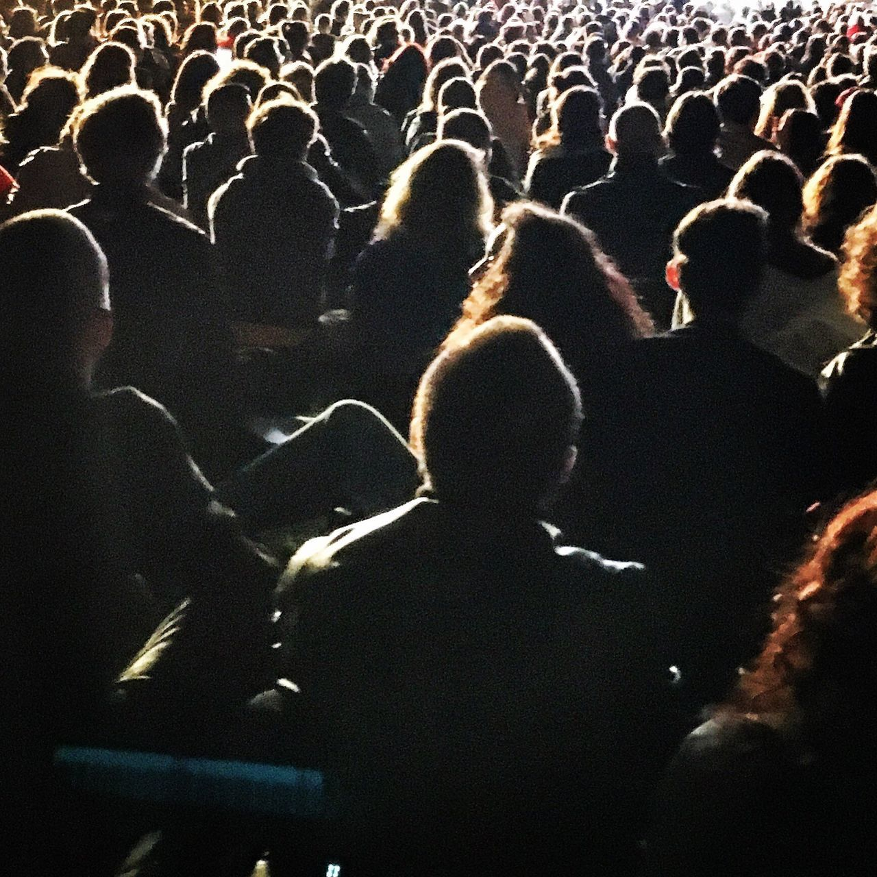 large group of people, audience, crowd, men, rear view, real people, arts culture and entertainment, togetherness, women, enjoyment, performance, standing, leisure activity, indoors, illuminated, popular music concert, day, people, adult