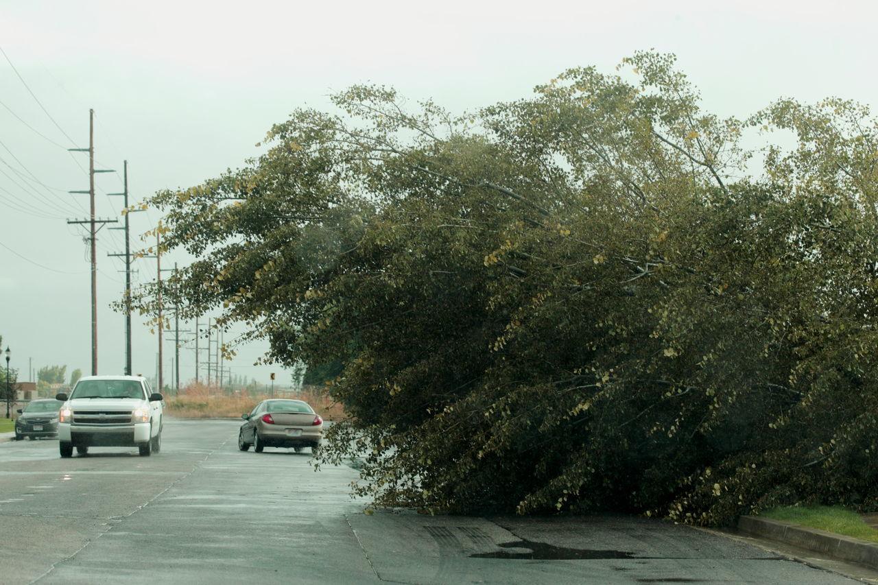 Beautiful stock photos of tornado,  Car,  Day,  Growth,  Horizontal Image