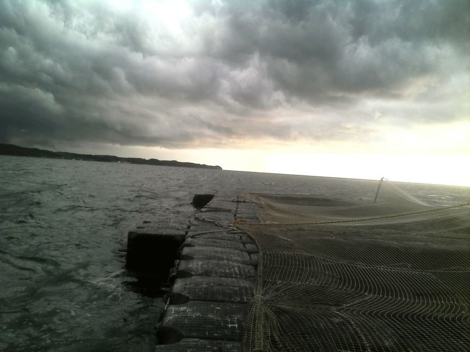 Looking Into The Future Campeche Fishfarm Beach Life Mexico Storm Clouds Jaulaflotante Aquaculture