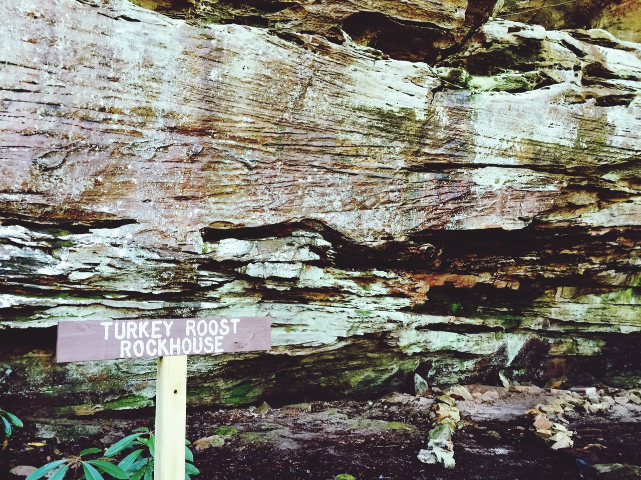 Turkey Roost Rockhouse rock formations Tn Tennessee Hiking Trail