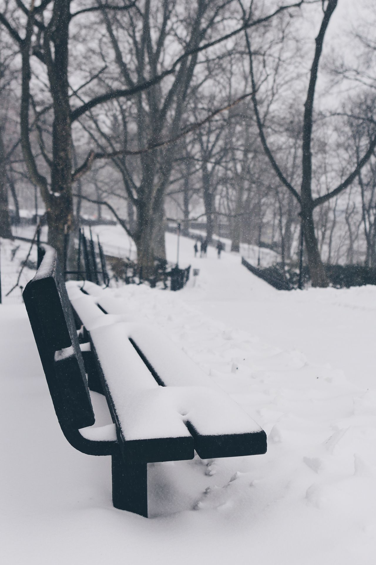 Winter Snow Cold Temperature Weather White Color No People Nature Day Outdoors Snowing Bench NYC