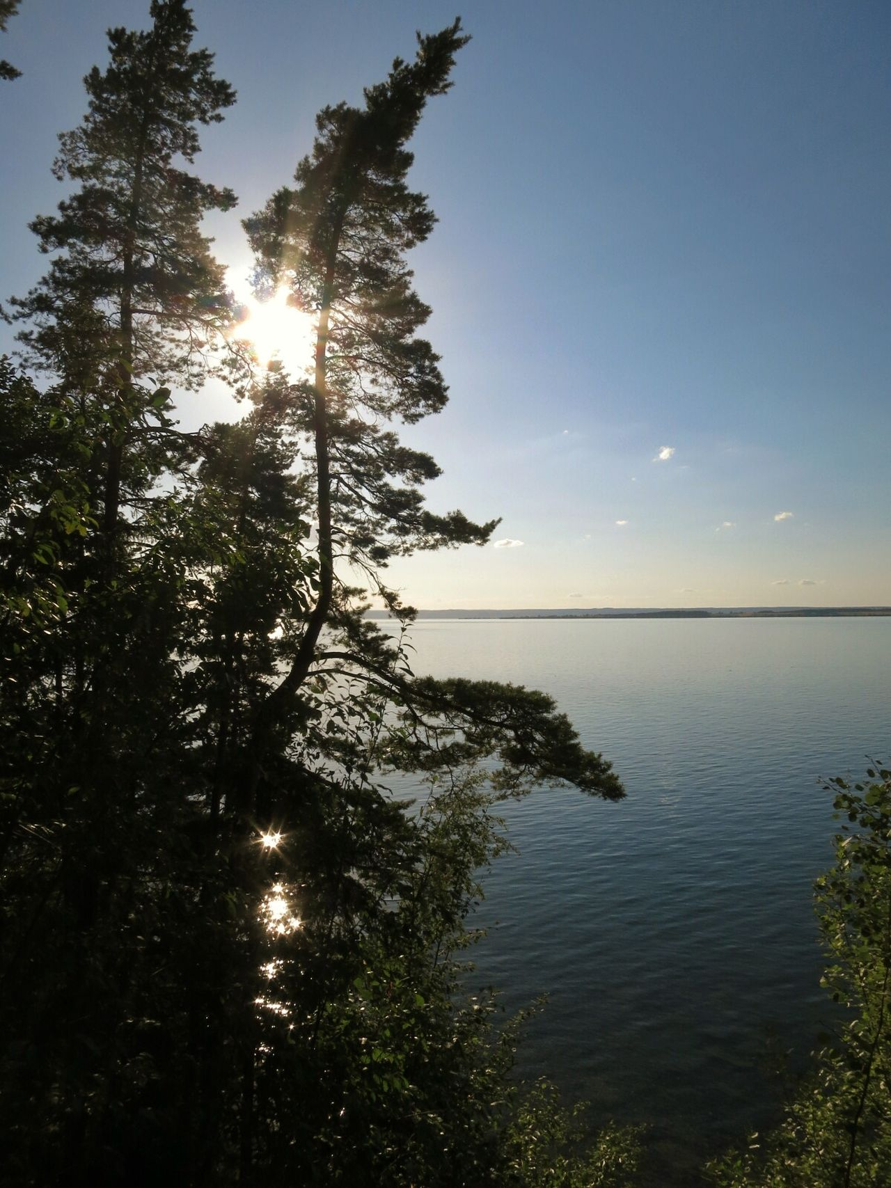 One of many lovely views at Västanå nature reserve. Trekking Lake Enjoying The View Nature Reserve