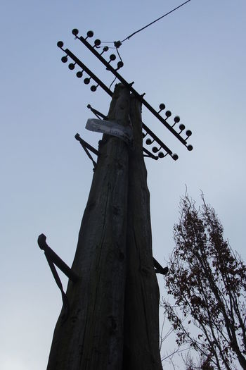 Sky Telegraph Pole Tree Wires Wires And Sky