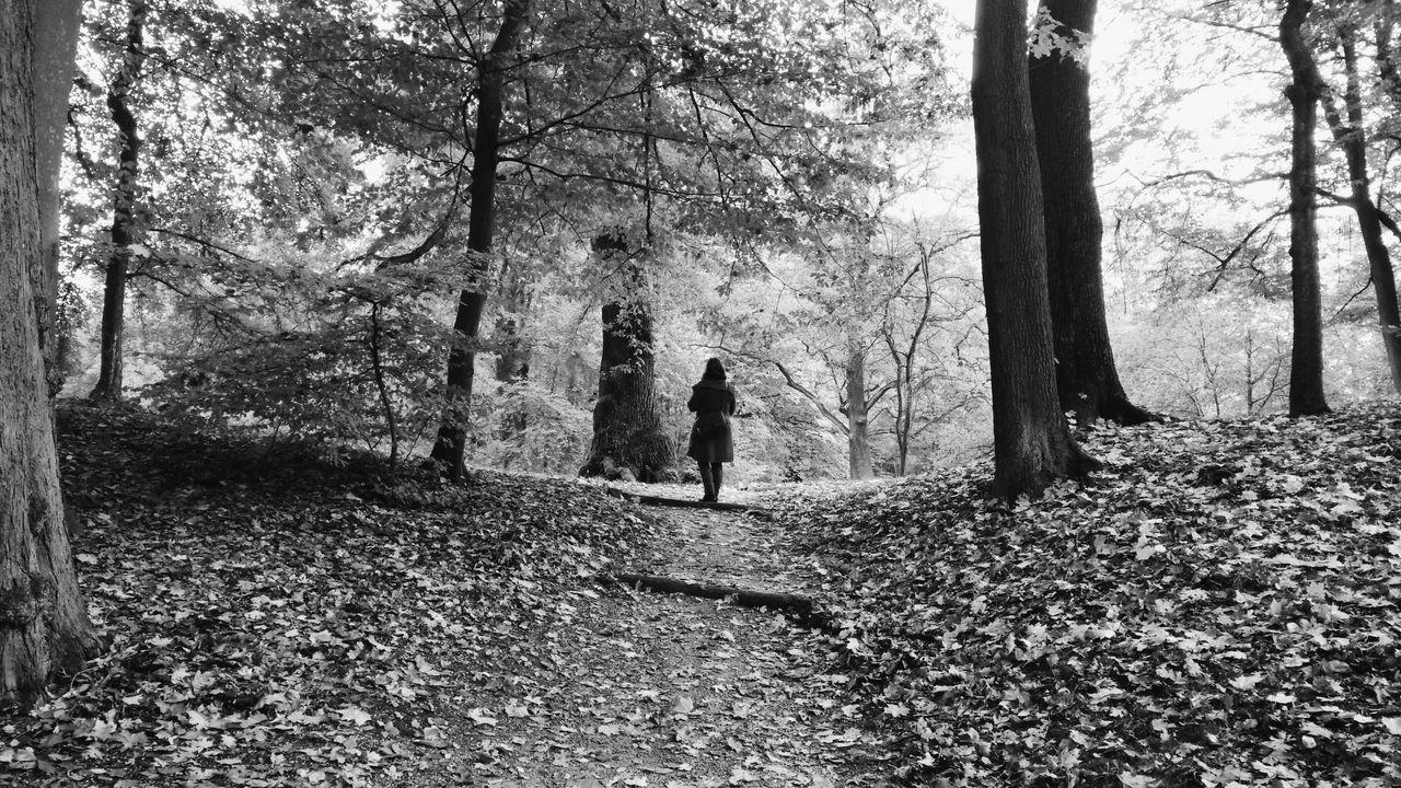 Melancholic Landscapes Vscocam Blackandwhite Nature_collection