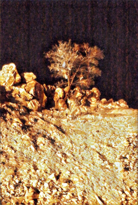 Photooftheday Mountains Canon EOS 70D Taief Picoftoday Outdoors Prisma App Prisma_Filter Prisma Effect Prisma Art Prismacolor Prisma Moments
