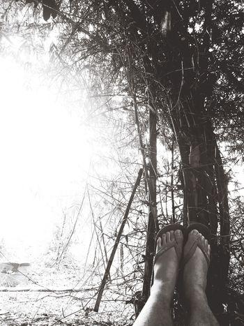 Overpowering Light|first| Nature One Lavish Lifestyle Bettertogether Photog Yette First Eyeem Photo