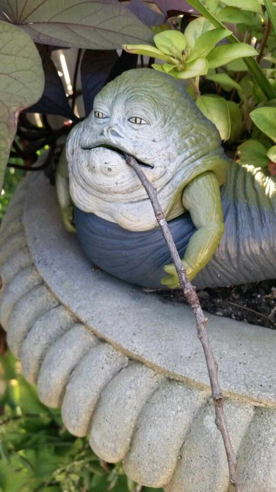 Humor Star Wars Jabbathehutt Garden Jabba