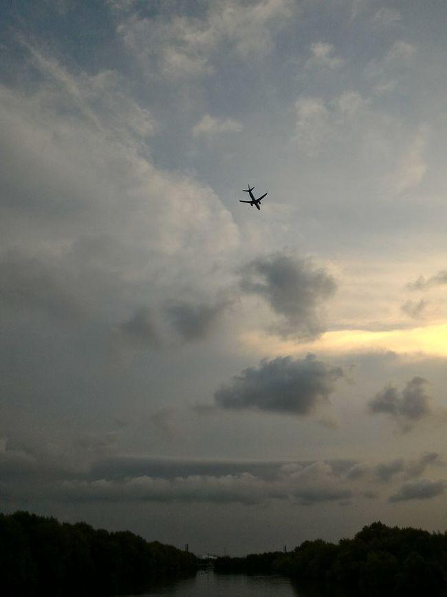 Passing by Mangrove Plane Silhouette Sky Sunset First Eyeem Photo