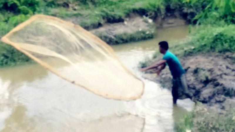 Fisherman Water Fishing Fishing Net BeautifulBANGLADESH Sylhet Beauty In Nature