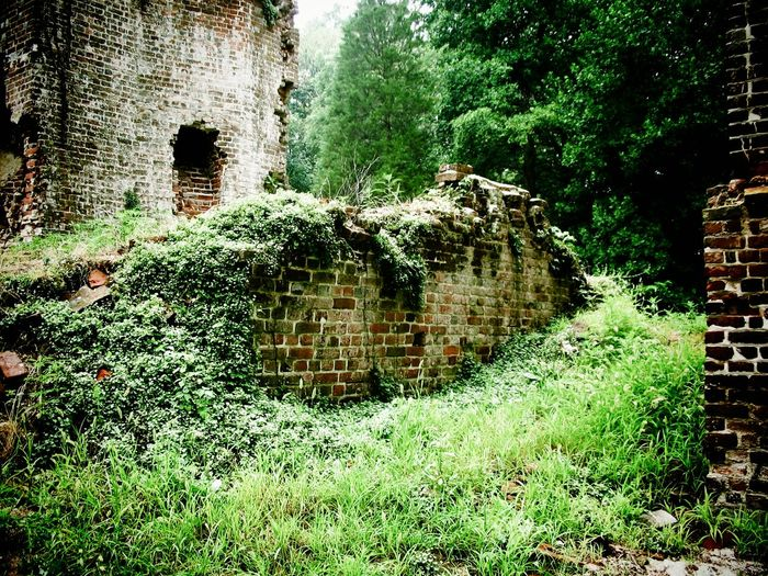 The Ruins of Rosewell Architecture Brick Wall Building Building Exterior Built Structure Day Deterioration Exterior Grass Green Color Growth Historical Building Nature No People Old Outdoors Plant Rosewell Mansion Run-down The Past Tree