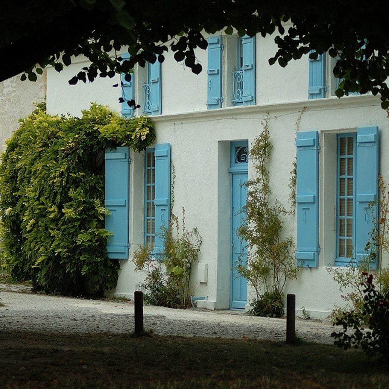 Les volets bleus Talmontsurgironde Village Presqueisle Bleu