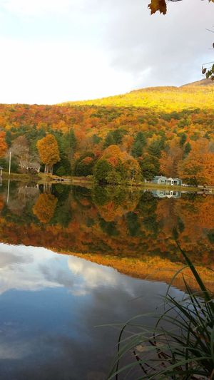Good Morning Golden Hour Unfiltered Unaltered Unmotified Perfect Timing Peak True Colors Fall Colors Water Reflections Placid  Natures Beauty Green Mountain State