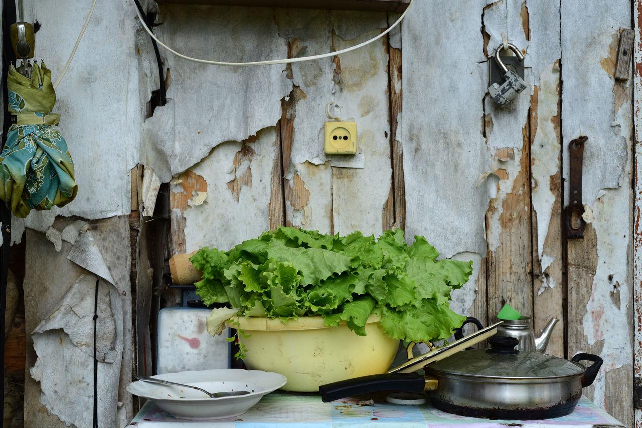 still life Freshness Healthy Eating Old Wall Plate Pot Salad Still Life Suburb Unbrella Village