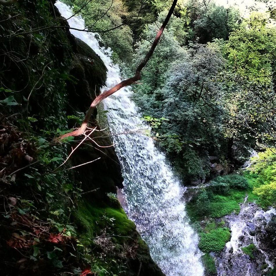 Waterfall Badurach Pinsharp Walk woodsnaturewaterdropslikeyolocoolpicofthedaywalkfriendsniceday