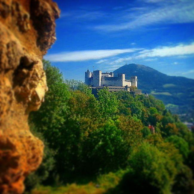 Idag visade Salzburg en av sina bättre sidor. Ytterst gemytligt. Hikests Tävlingomåretskatalogbild Brunochvälmående Borg nofilter eller