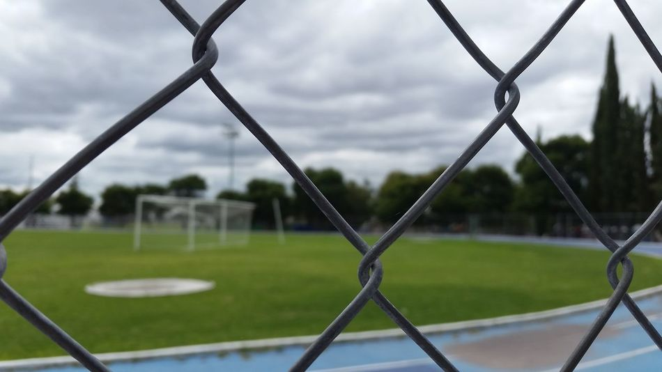 Beautiful stock photos of baseball, Chain Link Fence, Close-Up, Day, Focus On Foreground