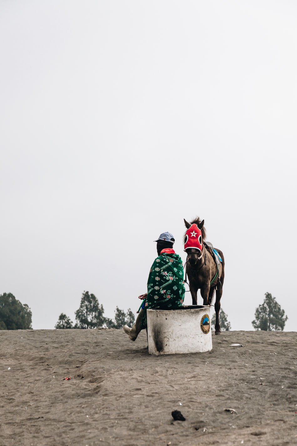 Bromo Mountain, Java, Indonesia Bromo Bromo Volcano Clear Sky Copy Space Day Desert Domestic Animals Horse Horseback Riding Livestock Mammal Men Nature One Animal Outdoors People Real People Rear View Riding Sitting Sky Transportation Travel Destinations Working Animal