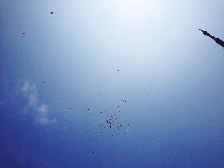 Beach 結婚式で風船飛ばしてたんだけど、ゴマにしか見えないね^^; Blue Sky Balloons