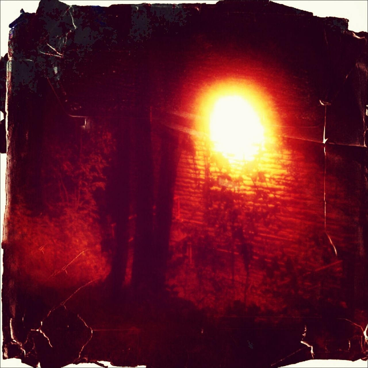 Andrography Phoneography Lomography The New Light