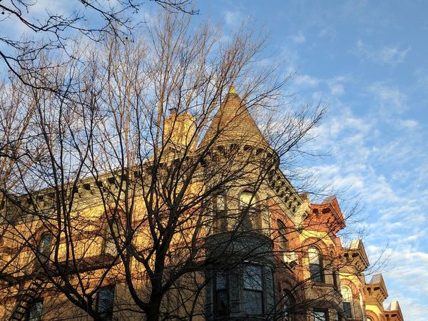 Morning light on brownstone roofs. 11488865 Cloud - Sky Outdoors Tree Early Morning Commute walking