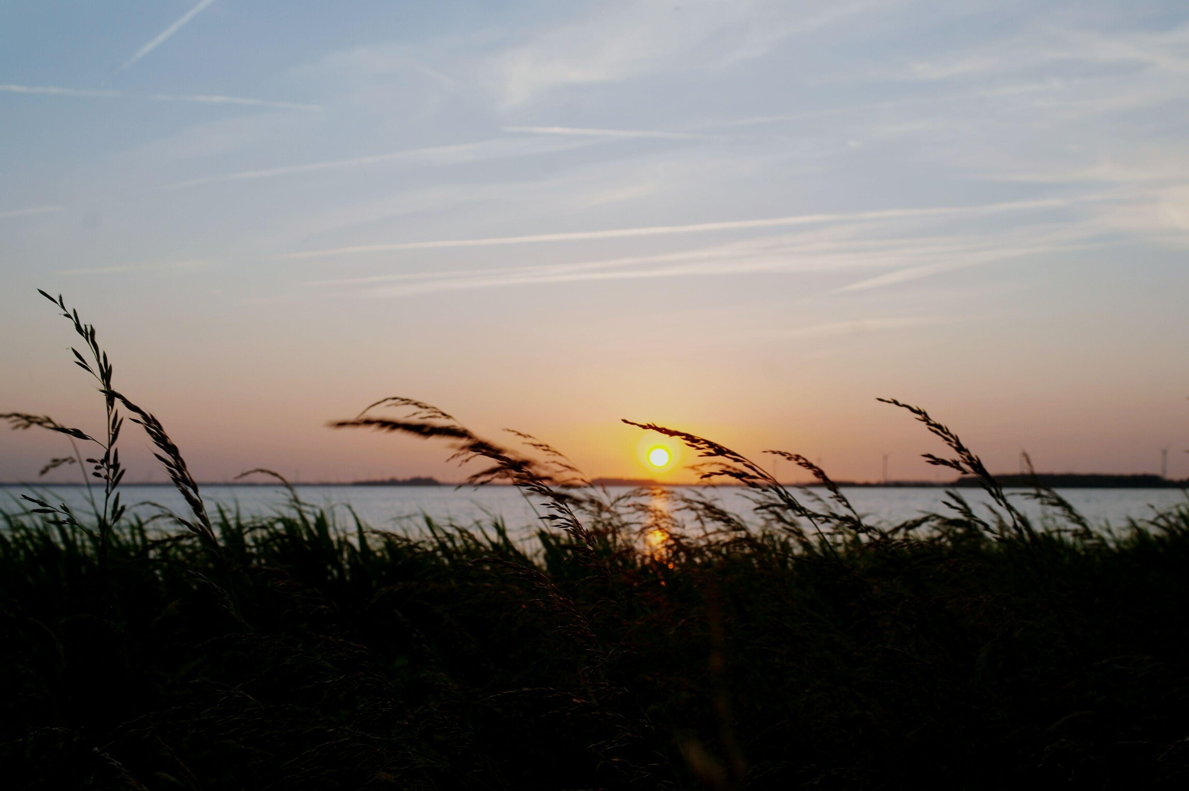 Boulevard sunset Netherlands Harderwijk Sunset View Beach