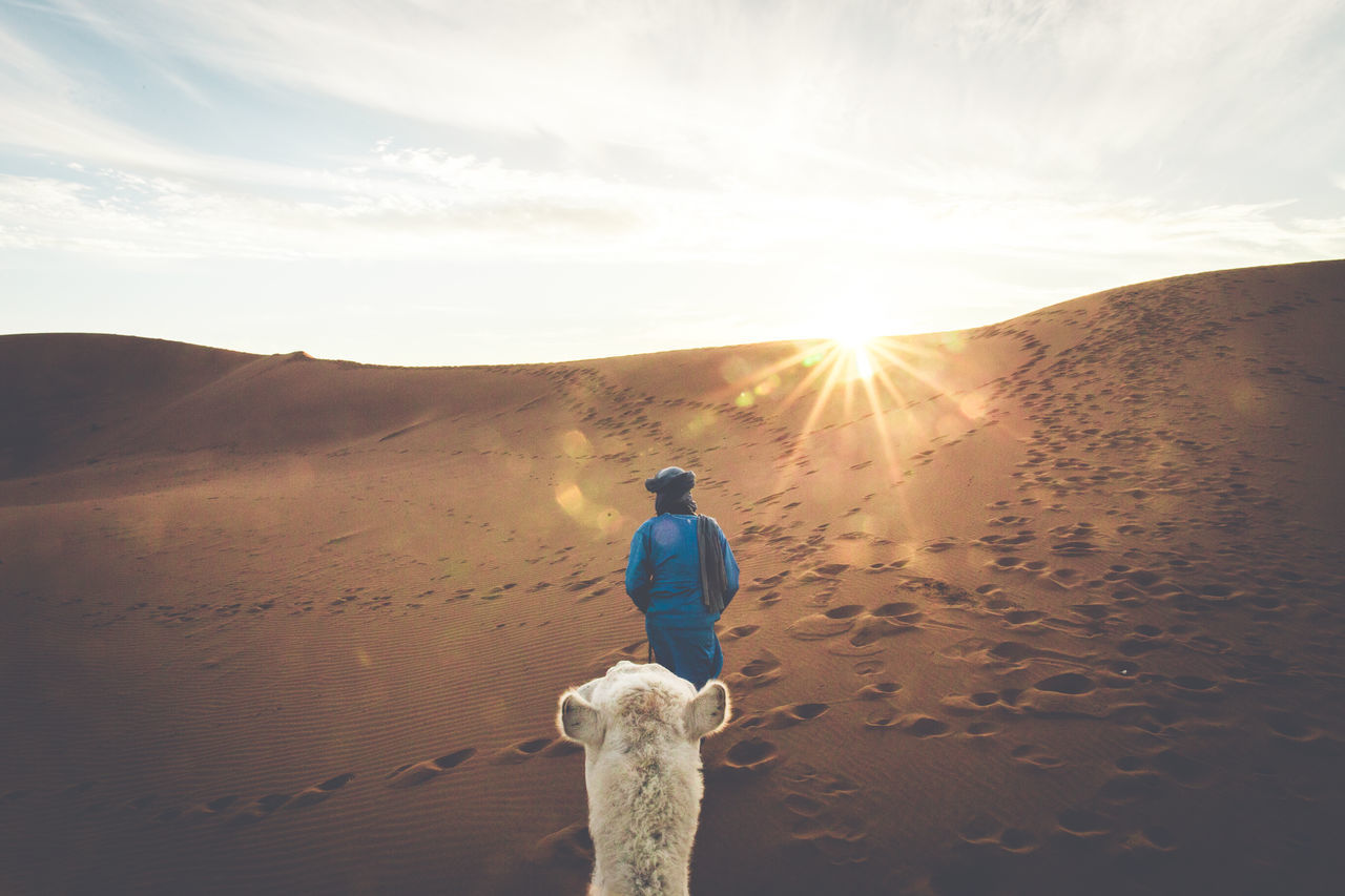 Rear View Of A Man And Camel Standing In Desert