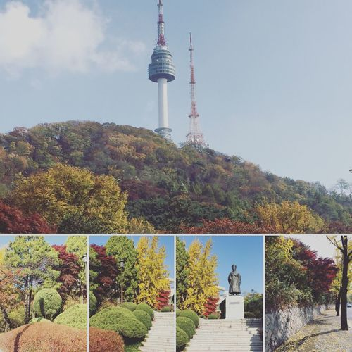 Les couleurs automnales arrivent près debout la Tour de Namsan Autumn Korea Namsan Tower  Seoul Itaewon Southkorea Tower Tree First Eyeem Photo