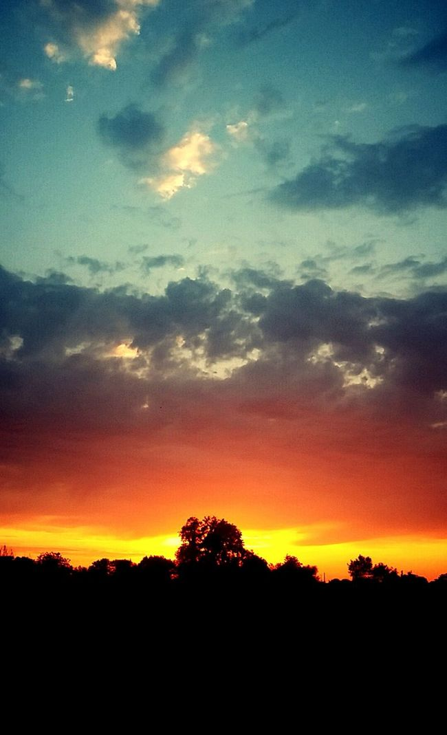 Sundown Sky And Clouds Colours Trees Red Silhouette Nature June