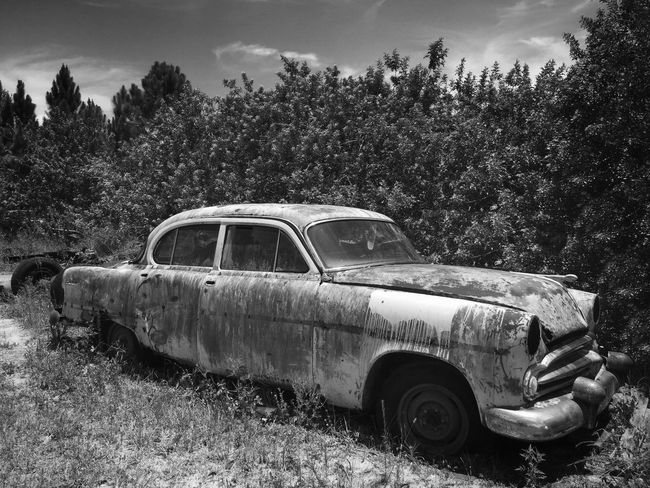 '52 Dodge sedan Junkyard Junkyardcar Rusty Autos Old Dodge Car Old Car Scrapyard Rusty Auto Black & White Photography