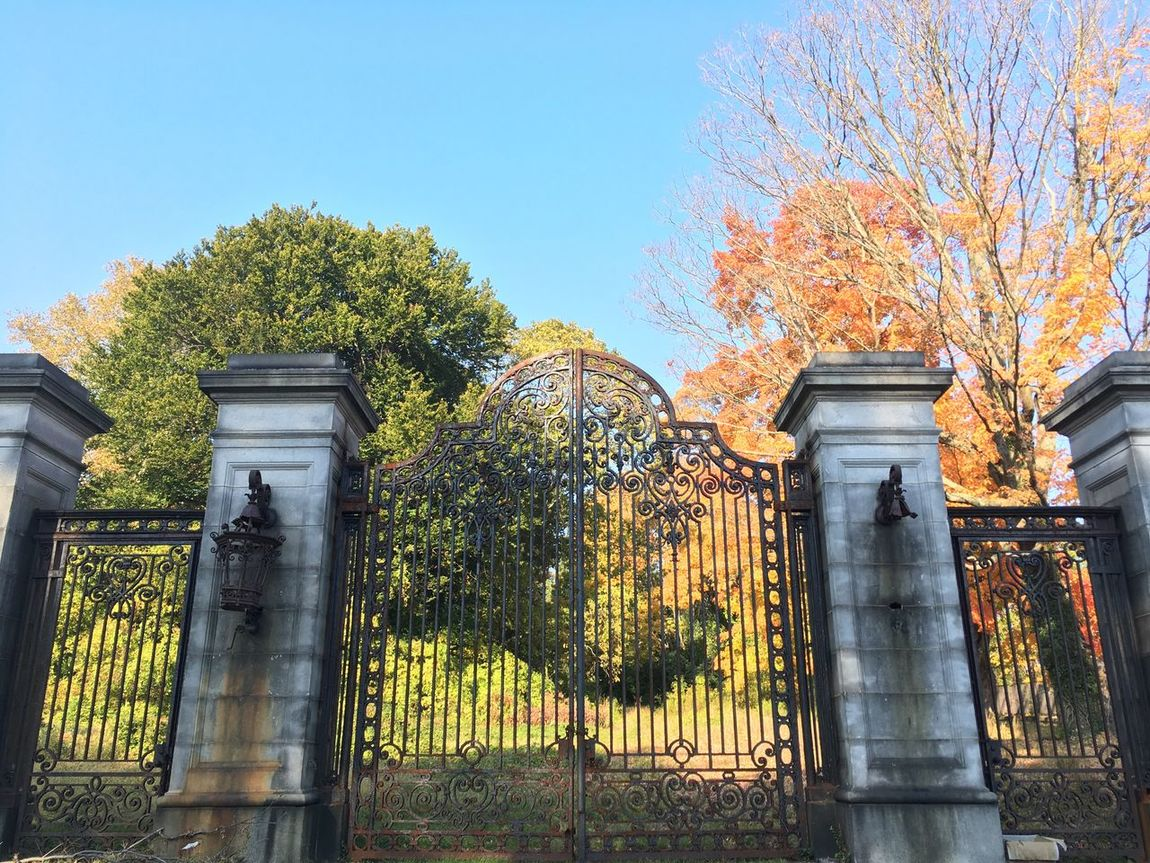 Old Gate Holloween🎃 Built Structure Outdoors Tree Day Low Angle View Clear Sky Fall Leaves Gate Mansion House Lynnewood Hall Mansion Architecture 1900's Gateway Sunday Rundown Old Fall Colors Nature