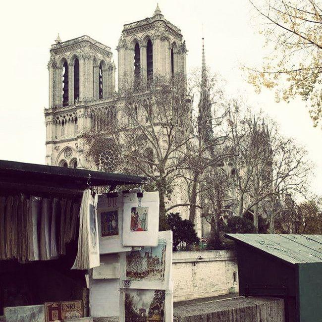Notredame Paris LoveParis LaVilleLumière Parigi France Francia Lungosenna Libri  Bancarelle Laseine
