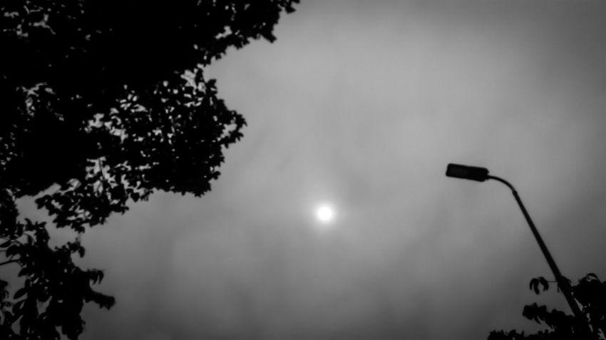 Sky Sun Light Park Black & White Blackandwhite Photography Mobile Photography Monochrome Monochromatic