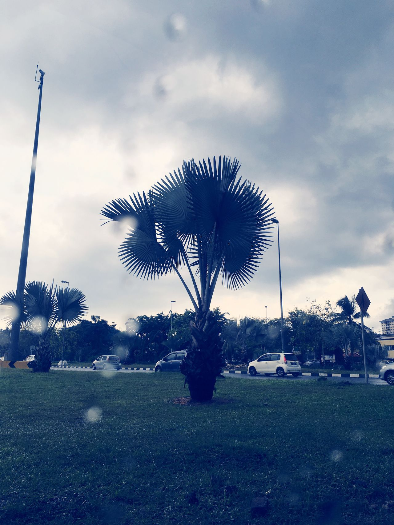 Check This Out Taking Photos EyeEm Rainy Days Kuala Lumpur Iphone6splus Reiimy Awesome