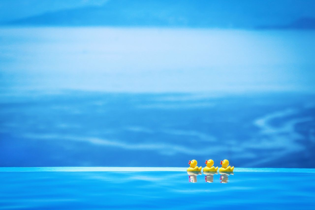 Blue Beauty In Nature Sky Day Nature No People Outdoors Floating On Water Cloud - Sky Fragility Water Swimming Pool Pool Lefkada Lefkada, Greece Summer Ducks Yellow