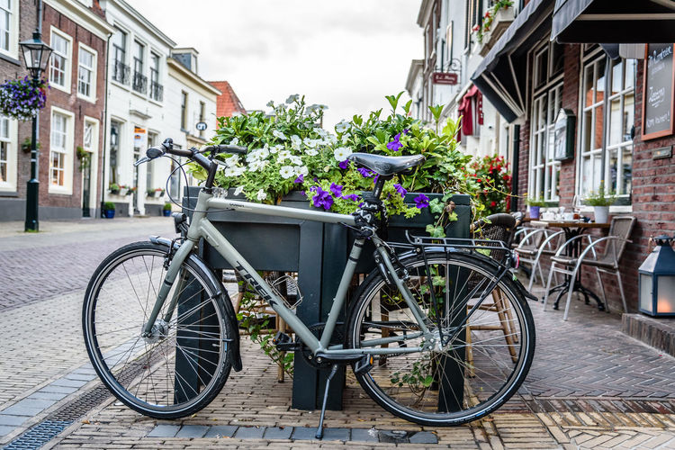 Cityscape of Naarden Architecture Bicycle Bicycle Rack Building Exterior Built Structure City City Cityscape Cityscapes Day Flower Fortress Garrison Land Vehicle Mode Of Transport No People Outdoors Stationary Street Tourism Town Transportation Travel Destinations Tree