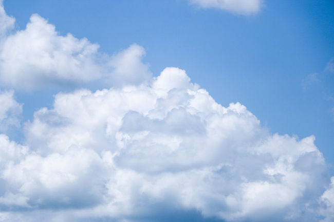 Backgrounds Beauty In Nature Blue Cloud - Sky Cloudscape Cumulus Cloud Day Fluffy Heaven Horizontal Low Angle View Nature No People Outdoors Scenics Sky Sky Only Softness Sunlight Tranquility Weather White Color