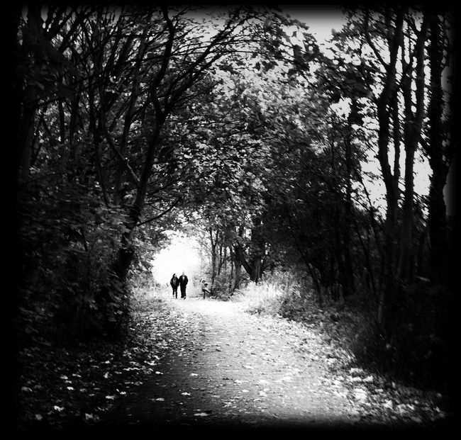 Monochrome Blackandwhite Shootermag Landscape Eye4photography