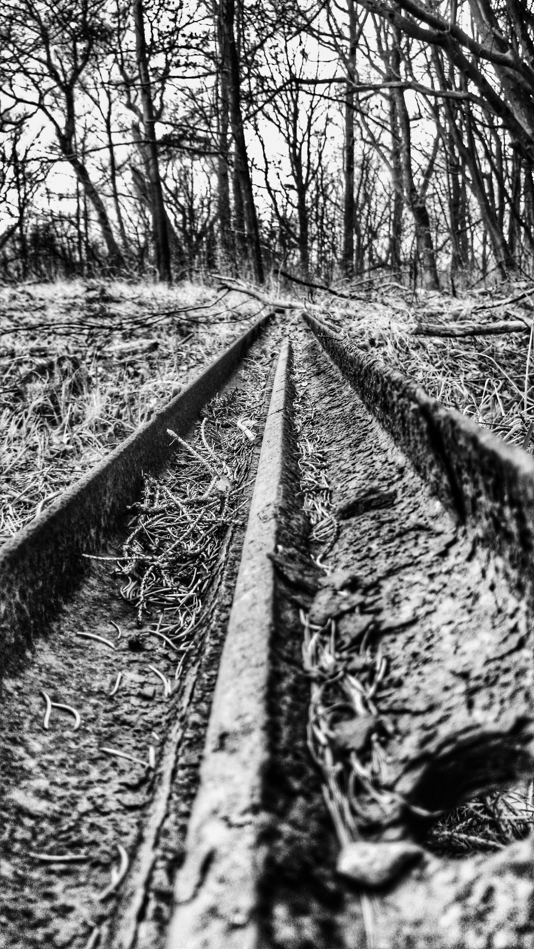 Iron Railroad Tracks Järn Järnvägsspår
