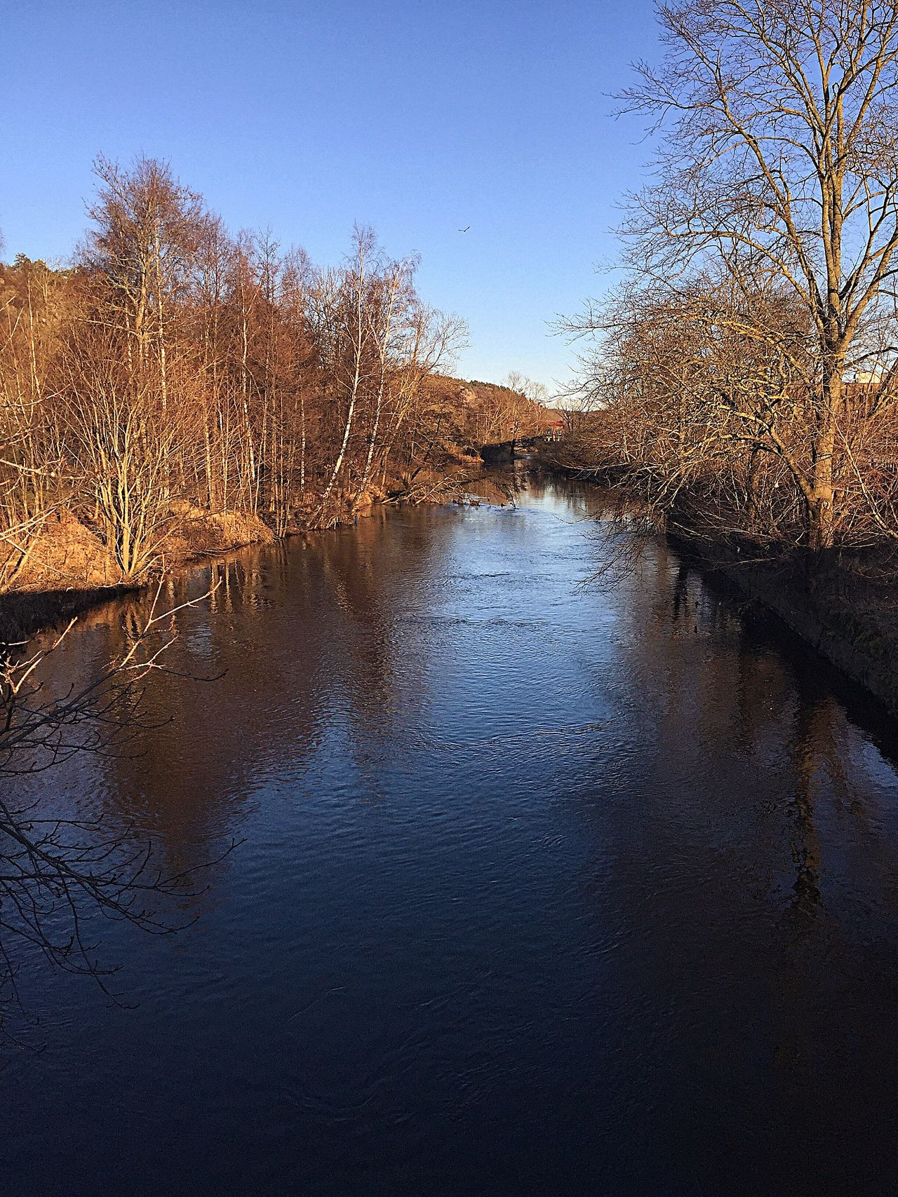 Walking Around Water Nature Clear Sky Outdoors Sweden Walking Around Taking Pictures IPhoneography Showcase: January Taking A Walk Beautiful Day Nice Day 2017